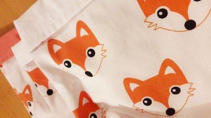 panières / vides poches renards
